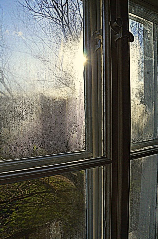 widok z okna2